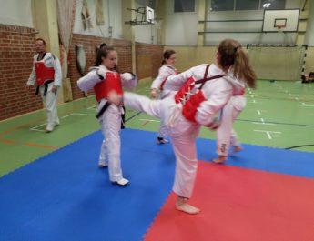 Sichtungstraining für Greifswalder Taekwondo-Nachwuchs