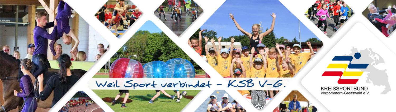KSB V-G